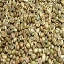 Pure Organic Coffee A Grade Dried