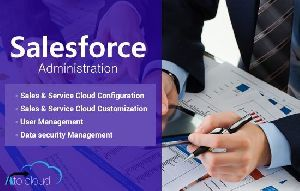 Salesforce Administration Services