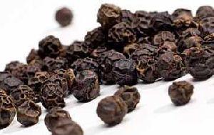 Hybrid Black Pepper