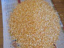 Yellow Maize Grit