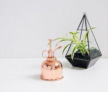 Plant Mister Copper Mist Sprayer