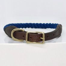 Blue Dog Collar Rope Dog Collar Rope And Leather Collar