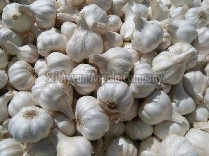 Fresh Ooty Garlic