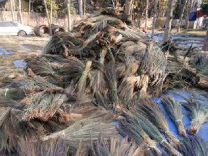 Brooms Raw Material