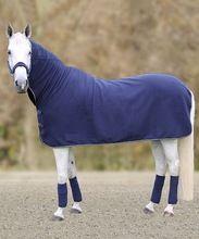 Equestrian Cotton Fabric Horse Rug