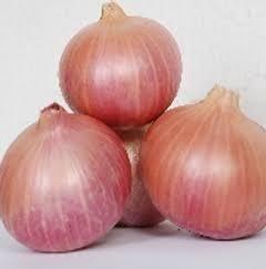 Fresh Yellow Onion, Nashik Gavati ( Garva )