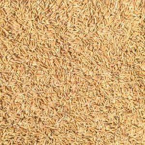 Broken Rice Husk