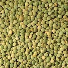 Green Lentil