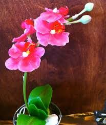 handmade clay flowers