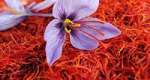 Afghan Saffron Threads