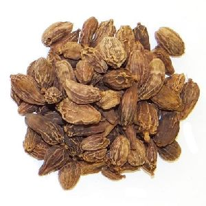 Cardamom in Kerala - Manufacturers and Suppliers India