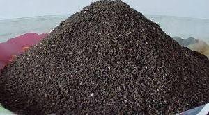 Vermi Compost