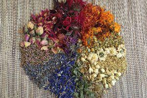 Floral & Herbal Tea