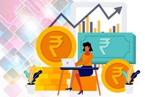 Domestic Money Transfer Services