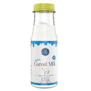 Fresh Camel Milk