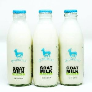 Sterilized Goat milk