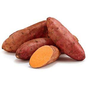 Fresh Sweet Potato