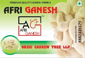 Premium quality all grades cashew nuts available