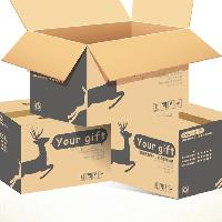 product packaging carton