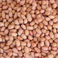 Peanuts Kernel