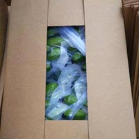 Agro Product Packaging Service