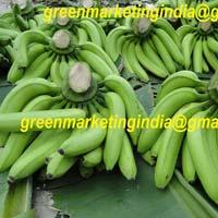 Green Banana G9