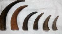 Buffalo Horn Tips