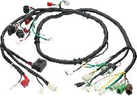 Automobile Wire Harness