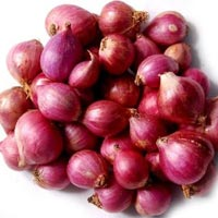 Fresh Madras Onion