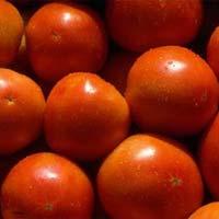 Tomato Seeds
