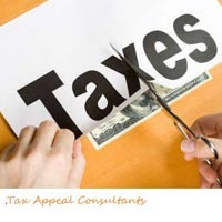 Tax Appeal Consultant