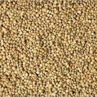 Guar Seeds
