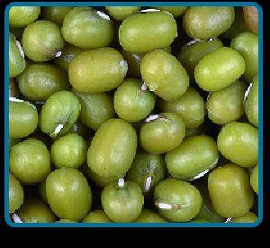 Green Moong