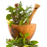 Herbal Treatment For Prolapse Rectum
