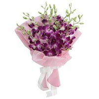 9 Purple Orchids Wrapped In A Baby Pink Wrapping Paper