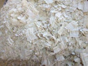 White Glue Powder