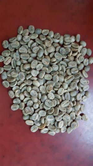 Green Coffee Beans - Arabica