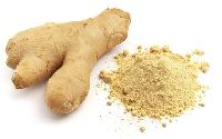 Dry ginger extract