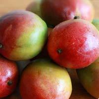 senthoora mango