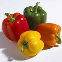 Fresh Colored Capsicum