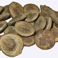 Strychnos Nux Vomica Seeds