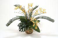 Yellow Orange Vanda Orchid
