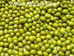 Whole Moong Beans