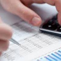 Professional Tax Return Services