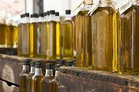 Pure Olive Oil for Sales