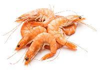 Frozen Crabs