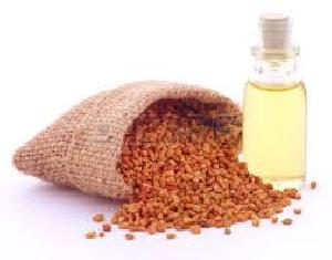 Fenugreek Seed Oil Co2 Extract