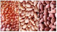 Raw Peanut Kernels Skinned