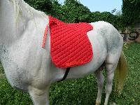 VE-SP-006 Horse Saddle Pad