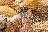 Organic Grains